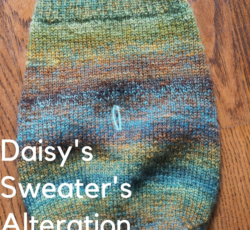 Daisy's Sweater's Alteration