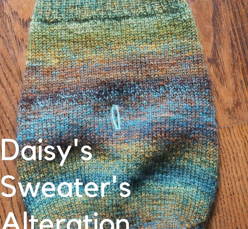 Daisy's Sweater's Alteration